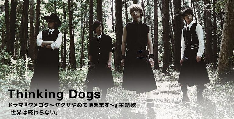 Thinking Dogs ドラマ『ヤメゴク~ヤクザやめて頂きます~』主題歌 「世界は終わらない」